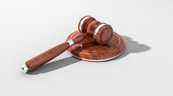 Noções de Direito Constitucional - Prof. Leonardo Favarin